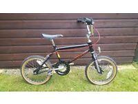 Raleigh Mini Burner Old School BMX