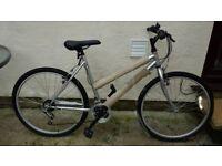 Ladies /Teenagers Bicycle Never Used