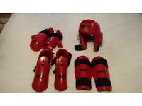 Martial Arts Protective Pads