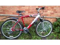 "Mountain bike-Ammaco 26"" x 19 "" with alloy frame and shimano gears."