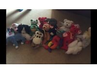 16 TY teddies with tags
