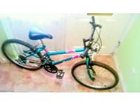 Womens raleigh mountain bike, (very tidy)