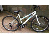Raleigh Activ Flyte II Mountain Bike