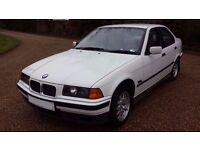 BMW 318I E36, Alpine White. August MOT, Never been welded!
