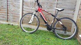 Bike Monty KY10
