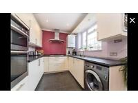 Spacious 4bedroom Extended house LANGLEY