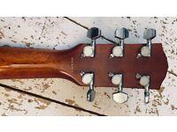 Fender DG 14s TF