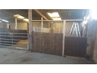 Paddock for rent. Secure fencing and stable if wanted
