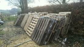 50 pallets for firewood stove woodburner
