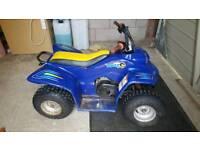 Quadzilla buzz 50cc auto