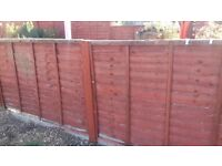 Fence Panels and Concrete Gravel Board