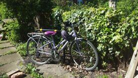 Claud Butler Windermere women's bike