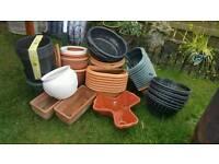 Garden Pots/Hanging baskets