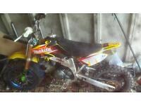 Lifan 125cc pitbike