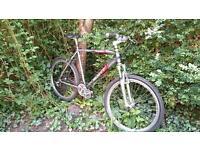 "Scott Purgatory 21.5"" Mountain Bike reduced price"