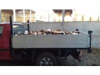 Seasoned logs for sale free delivery with in a 10 mile radius of Ashurst