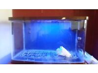 Glass fish tank with stand theres 3 different sixes all free