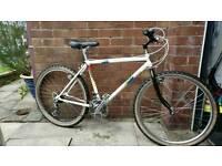 Falcon manta retro mountain bike