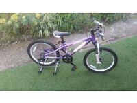 Carrera Luna Girls or boys Mountain Bike 20 Wheel Alloy Frame 7 Speed excellent condition