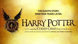 Harry Potter and the cursed child x 2