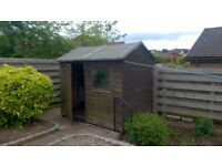 8' x 6' Wooden garden shed for sale in Forfar.