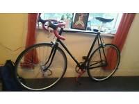 Singlespeed bike + equipment for sale