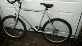 Raleigh max ogre-15