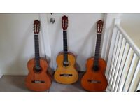 Classical Acoustic Guitars - Yamaha & Encore