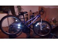 Apolo girls bike 24inch wheel