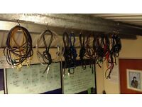 Reconditioned Guitar Leads £5 each or 5 for £20