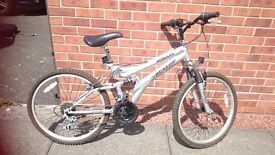 "24"" Adult Mountain Bike"