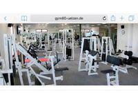 Full gym 80 set up commercial bodybuilding equipment