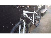 Selling my carrera valour bike