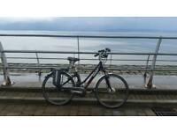 GIANT Twist Freedom CS Light Electric Bike