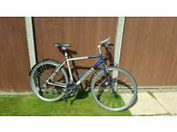 Mens Dawes bike