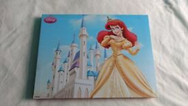 Disney Princess canvas x2