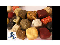 Professional Big Carp Fishing Homemade Bait Advice Proven To Defeat Readymade Boilies Fast!
