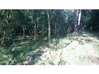 4.75 Acre Woodland Near Exeter, Beautiful, Secluded, Stream, Good Access, Compost Loo, Wood Store