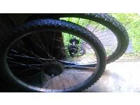g wheels of bike