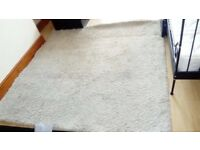 Lovely Carpet Rug in good condition