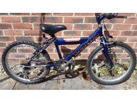 Saxon Lobo children's mountain bike
