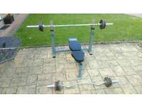 Olympic Weight bench and Olympic weights