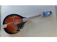 Chord Mandolin New Condition Very Good Order