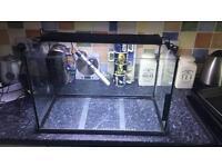 Tetra complete fish tank