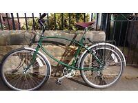 Pashley bike medium Shandon