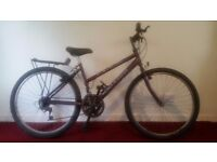 Raleigh Max Ladies Mountain Bike with Lock