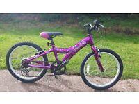 giant taffy Girls mountain bike