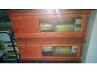 brand new hutches and indoor cages for rabbits guinea pigs, starter packs etc, delivery available