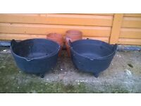 Plant pots for sale