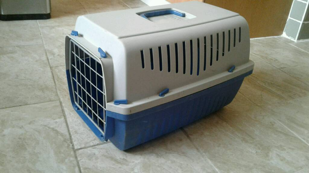 Cat Carrier Box For Sale Only 8 In Lawrence Weston Bristol Gumtree